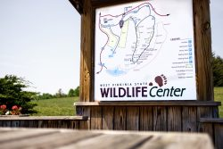 A photo of the map for the West Virginia Wildlife Center